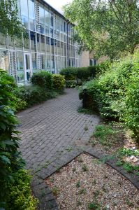 Garden at CFH prior to redevelopment
